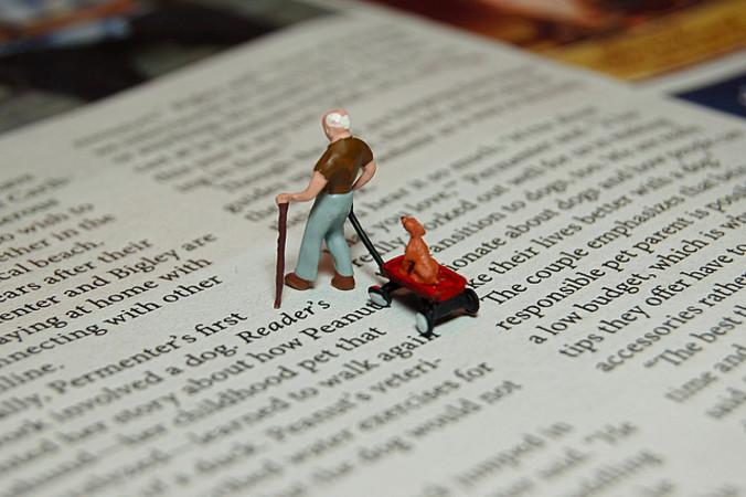 進化論の教育問題について議論するカンザス州教育委員会(Getty Images)