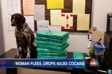 ロサンゼルス空港で女性客室乗務員が所持していた約31キロのコカイン(NBC動画スクリーンショット)