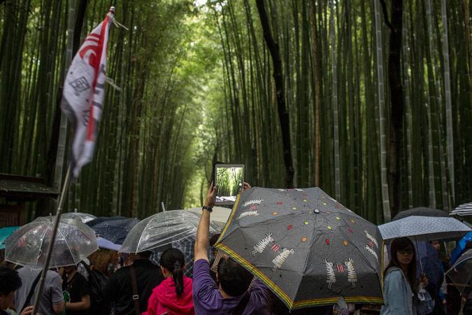 中国「爆買い」で笑った国はどこ?写真2015年9月、外国人観光客がたくさん訪れる京都府嵯峨野の竹林(Chris McGrath/Getty Images)