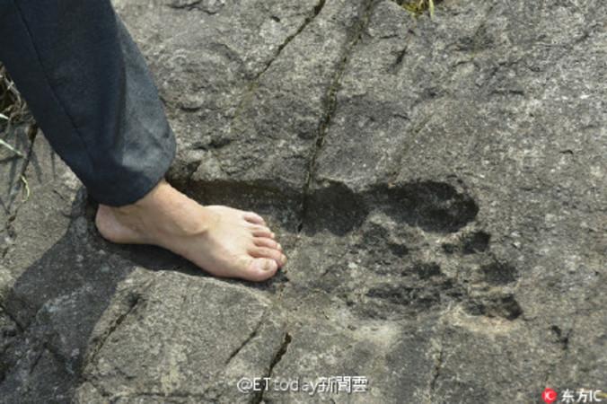 貴州省の村の近くに山で、長さ57センチの人間の足跡に似た巨大な化石が発見された(ネット写真)