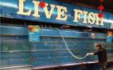 北京市内のスーパーの生鮮魚介類のいけすが空になる(ネット写真)