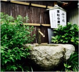 黒松の井戸(大道 撮影)