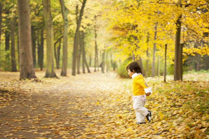 森の中の男の子(Philippe Put/Flickr)