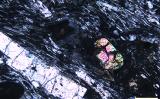 写真右側の多色の鉱石がジルコン(wits.ac.za)