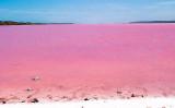 オーストラリアのメルボルンにあるウエストゲートパークの湖が、ピンク色になった(Westgate Parkのfacebookページより)