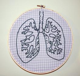 新しい研究で、肺は呼吸器だけでなく、造血に関わる器官であることを初めて明らかにした。(Hey Paul Studios/Flickr)
