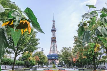 札幌市(あめまん)