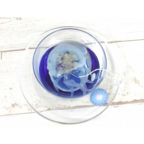 いやされる ふわふわクラゲの青い紅茶(株式会社Village Vanguard Webbed)