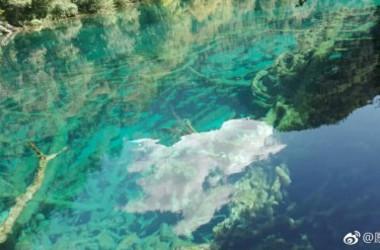 地震前の九寨溝。透き通ったエメラルドグリーンの湖が観光客に人気。(ネット写真)