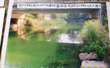 7月27日、浙江省湖州市長興県で汚染した河川を撮影(住民提供)
