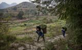 中国貴州省安順市にある、人里離れた小さな農村。羅(ルオ)家の4きょうだい、年長の2人(11歳と10歳)は農作業を手伝っている(Kavin Frayer/GettyImages)
