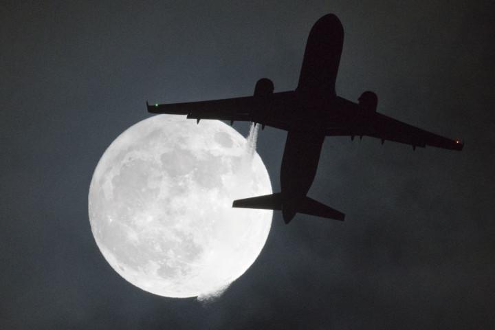 (JUSTIN TALLIS/AFP/Getty Images)