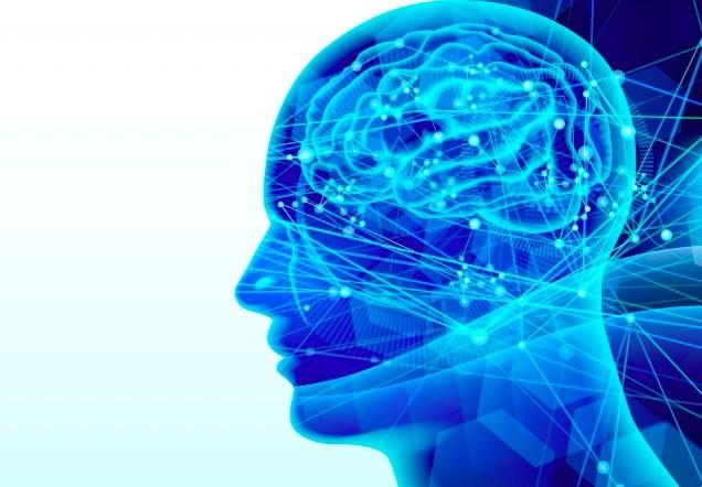 シワッツ教授は体のすべての臓器に「細胞記憶機能」があり、この機能が移植された臓器とともにほかの人の体に移りうると指摘している(PhotoAC)