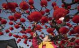 2月、旧正月の飾り付けがなされた北京市内の公園の樹木に触れる少女(NICOLAS ASFOURI/AFP/Getty Images)