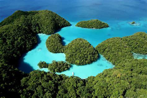 サンゴ礁の美しい太平洋の島パラオ。日本の3200キロ南、台湾から1500キロ南に位置する(wondermondo.com)
