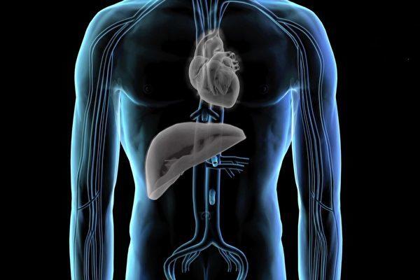 20日発表された新たな調査報告は、中国で今も臓器狩りが行われていると結論づけた(スクリーンショット)