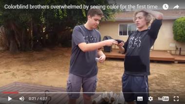 色覚異常を補正するサングラスをかける兄弟 (YouTubeより)