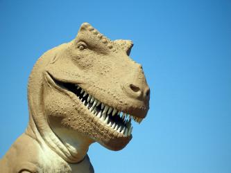 めずらしいティラノサウルスの骨が発見された。写真は、テキサス州グレンローズの恐竜の丘国立公園にある同恐竜の模型(mcdlttx/flickr)