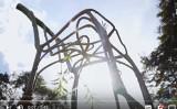 椅子の形に育てられた木(スクリーンショット)