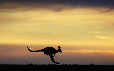オーストラリアでは中国共産党の浸透工作が蔓延(Ian Waldie/Getty Images)
