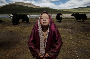 青海省玉樹チベット族自治州で2015年7月、目を閉じる若いチベット僧。チベットの文化は中国共産党の圧力で風前の灯火(Kevin Frayer/Getty Images)