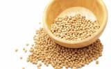 中国当局は4日、米国産大豆に対して25%の関税率を上乗せすると発表した。(EITAN ABRAMOVICH/AFP/Getty Images)