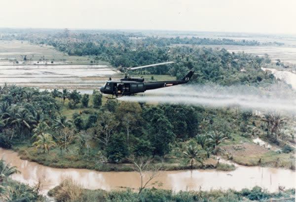 ベトナム戦争中、各地で枯れ葉剤が散布され、多くの人々を苦しめることになった(ウィキペディア)