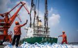米中貿易戦の激化で、中国当局は経済情勢の悪化に不安が募り、国内メディアに対する取り締まり・報道規制を強化した。写真は今年8月、江蘇省張家港で従業員が化学輸入品を下ろしている様子(Getty Images)