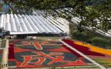 広島県の山間部に位置している世羅ゆり園。そこに平成の文字をサルビアとラベンダーで色分けした花文字があると聞き「平成も今年で最後だし、花文字を見に行こうか!」 とゆり園に行ってみました(写真/正恵)