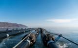 ロシアのバイカル湖に敷かれた、中国企業のミネラルウォーター製造のためのパイプ。ロシア全土で計画への反対デモが起こり、土地収奪や環境破壊などがスローガンになった(VADIM DANILOV/AFP/Getty Images)