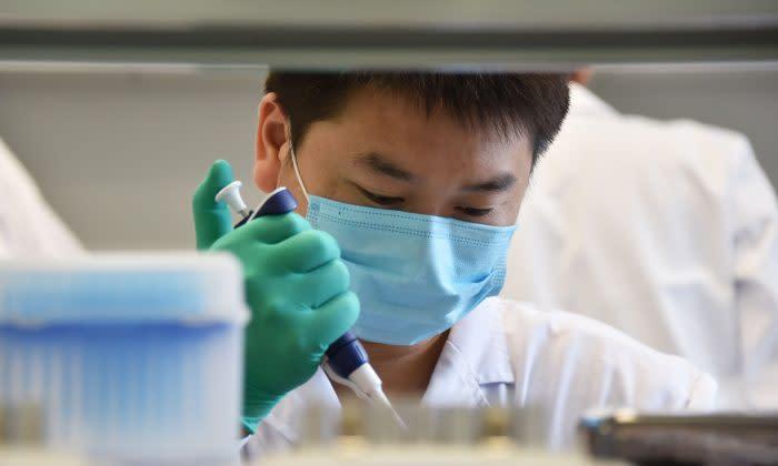 技術者が北京の遺伝子研究所で作業を行っている様子、2018年8月撮影 (GREG BAKER/AFP/Getty Images)