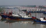 2016年3月、上海に近い江蘇省の港に停泊する漁船(STR/AFP/Getty Images)