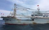 台湾の海洋巡視隊は、両岸境界線を越えた中国漁船を調査したところ、豚肉31キロを確認した。中国本土で蔓延するアフリカ豚コレラの警戒のため、全て押収し破棄した(淡水海巡隊)