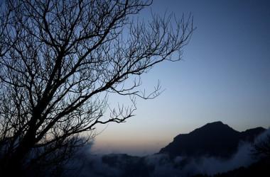 イメージ写真 (arachihuang/frickr)