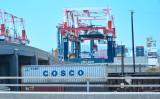 カリフォルニア州の港湾に置かれたCOSCOのコンテナ(Frederic J. BROWN / AFP)