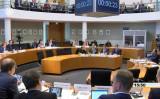 ドイツ連邦議会の人道人権支援委員会は5月8日、法輪功の迫害に関する公聴会を開いた(スクリーンショット)
