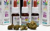 イタリアでは、大麻から抽出されたカンナビジオール含有のアロマが発売された(Getty Images)