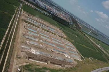 江蘇省南通市のある村では、35万頭のブタの死骸が埋められ、悪臭が漂っている(情報提供者)