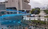 8月31日、香港警察は高圧放水車を導入し、青い水を噴射して抗議者を強制排除した(余鋼/大紀元)