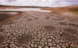 干ばつと山火事に見舞われるオーストラリアは、中国企業が地下水を汲み上げたことで、希少な地下水が数週間で枯渇した。写真は2007年4月、豪州アイバンホーで発生した干ばつの様子、参考写真(GettyImages)