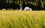 左翼の天敵はコントロールできない「自然」である。写真は、熊本県菊川町で撮影(FRANCK FIFE/AFP via Getty Images)