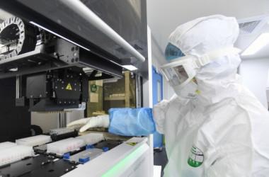 2020年2月6日、中国湖北省武漢市の「火眼」研究所で、検査技師が中共ウイルス(新型コロナウイルス)の検査を受ける人から採取したサンプルを調査している(STR/AFP via Getty Images)