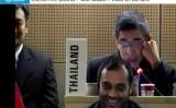 2月6日に開催されたWHO第146回執行理事会議でのタイ代表の発言が注目されている(WHOウェブサイトよりスクリーンショット)
