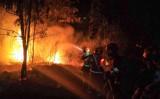 四川省、森林火災で消防隊員18人死亡した。昨年同じ時期にも隊員ら31人死亡する事故を起こしており、元当局者は「指揮系統は素人で人命軽視」と批判的に見ている。写真は3月31日、西昌市の瀘山で消火活動にあたる消防士(GettyImage)