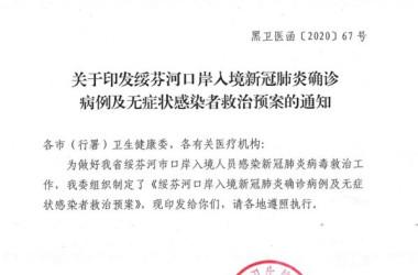 中国とロシア国境の街では「4530床で治療中」との記録がある(スクリーンショット)
