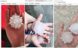 2020年6月25日、中国北京市で中共ウイルス(新型コロナウイルス)の形をしたひょうが降った(微博より/大紀元合成)