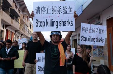 ガラパゴス諸島の住民が2017年、中国漁船の不法操業に反対するデモを行った(JUAN CEVALLOS/AFP via Getty Images)
