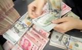 甘粛省にある銀行で、米ドル紙幣を数える銀行員。2019年6月撮影(STR/AFP via Getty Images)