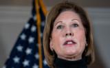 トランプ大統領弁護団の元連邦検察官シドニー・パウエル弁護士は2020年11月19日、複数の州で選挙管理当局を提訴する構えであることを明らかにした(Drew Angerer/Getty Images)