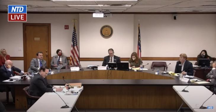 12月30日、ジョージア州で行われた、選挙に関する上院司法小委員会(スクリーンショット)